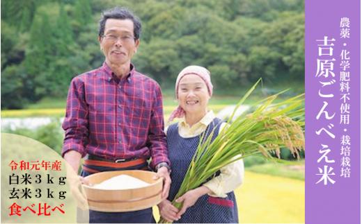 ◆数量限定【令和元年産・新米】「ごんべえ米」食べ比べ(白米3kg・玄米3kg)