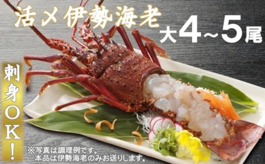 C707 【刺身OK!】活〆冷凍伊勢海老(大)