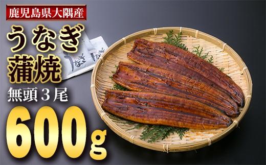 1131 鹿児島県大隅産うなぎ蒲焼 無頭600g[200g×3尾]