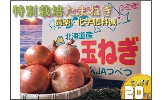 【A010-1】津別町産 特別栽培玉ねぎ20kg