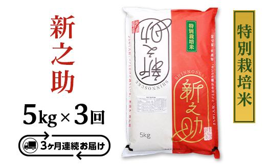 B7-06【3ヶ月連続お届け】長岡産新之助5kg(特別栽培米)