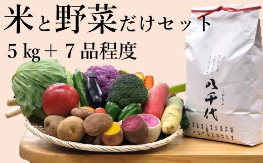 お米と野菜だけセットB