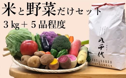 お米と野菜だけセットA