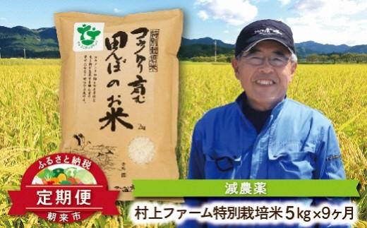 K-2-D 【限定15セット】定期便 特別栽培米コシヒカリ5㎏×9ヶ月【村上ファーム】
