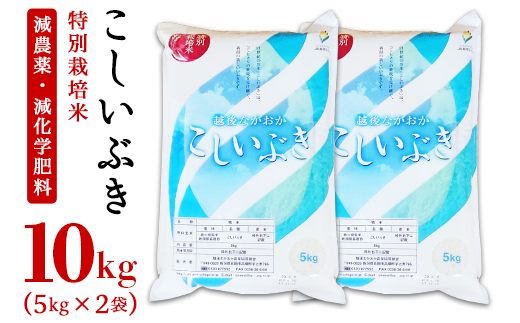 75-K10新潟県長岡産こしいぶき10kg(5kg×2袋)