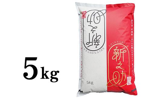 【令和元年産】新潟県長岡産「新之助」5kg