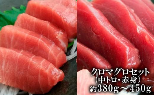 【本部町産】クロマグロ(中トロ・赤身)セット 約380g~450g