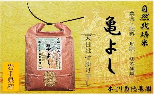 自然栽培米【亀の尾】(白米・玄米)5kg 木こりの菊池農園