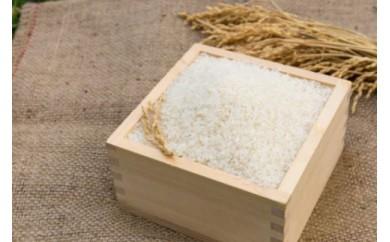 ~大雪山系の豊かな水で育った~令和元年産ゆめぴりか 白米5kg