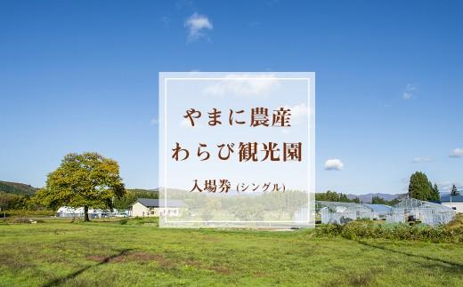 【限定10セット】令和2年開催つきざわワラビ園収穫体験利用券(お土産券付き)