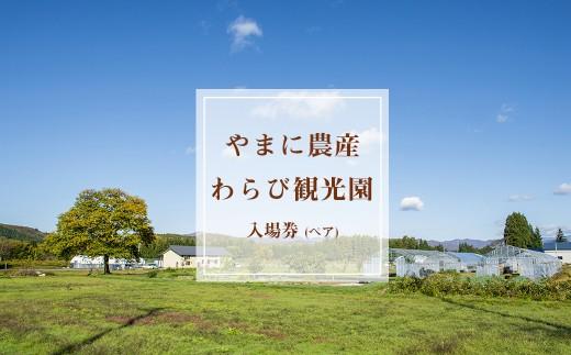 【限定10セット】令和2年開催つきざわワラビ園収穫体験ペア利用券(お土産券付き)