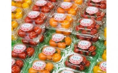 [№5674-0484]愛菜美人標準規格フルーツトマト4品種8パックセット