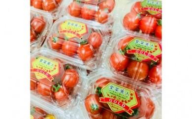 [№5674-0483]愛菜美人ゴールド規格フルーツトマト5品種8パック詰