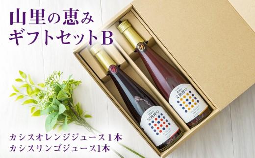 【数量限定】山里の恵みギフトセットB【ブレンドカシスジュース2本セット】
