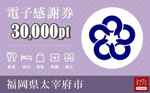 電子感謝券 30,000pt(1pt=1円)