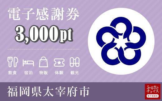 電子感謝券 3,000pt(1pt=1円)