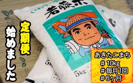 N-004 雫石町産「あきたこまち」精米 約10kg【定期便:6ヶ月】