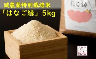 【2019年新米】佐伯の米処が生んだ減農薬特別栽培米「はなご縁」5kg