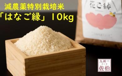 【2019年新米】佐伯の米処が生んだ減農薬特別栽培米「はなご縁」10kg