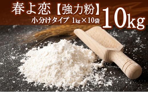 [№5794-0103]北海道共和産【春よ恋】強力粉1kg×10袋(計10kg)