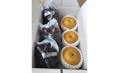 旬の味覚!種なし巨峰と旬の梨  贅沢セット  約2kg