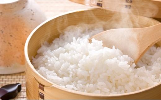 [№5539-0199]北海道厚沢部産 ふっくりんこ 5kg