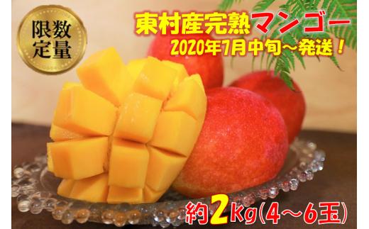 農家直送! 東村産の完熟マンゴー 約2kg(4~6玉)【2020年発送】