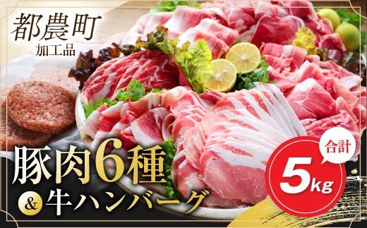 AB81 お楽しみ『豚肉6種&牛ハンバーグセット』合計5kg(都農町加工品)