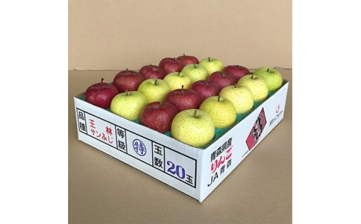 JA青森 青森県産りんご「サンふじ&王林詰合せ」計約5kg_A1-2【1094437】