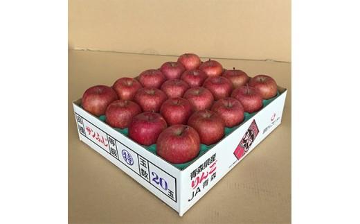 JA青森 青森県産りんご「サンふじ」約5kg_A1-1【1094436】