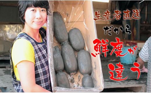 A5-052 佐賀県産泥付きレンコン(3kg)