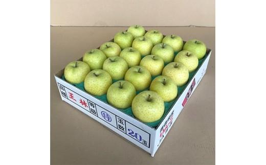 JA青森 青森県産りんご「王林」約5kg_A1-3【1094438】