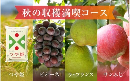 P-1233 秋の収穫満喫コース(2020年9月ぶどうからスタート)【定期便】
