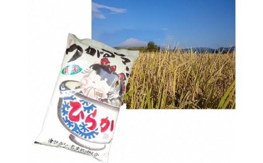 [№5731-0374]ひらか米5kg(平川市産つがるロマン精米)