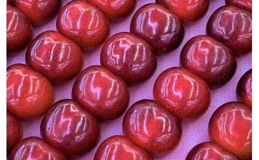 高品質なアンスリーファームのさくらんぼは、独自の生産方法により、甘さ、大きさも段違いで艶があり、大粒で果肉も厚いのが特徴です!