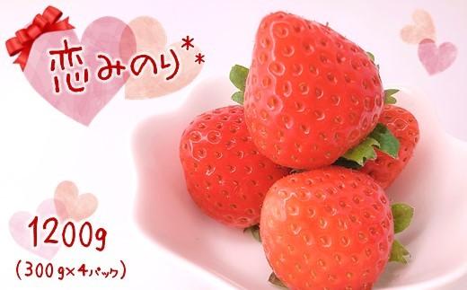 BL7 くまもと玉名産イチゴ 恋みのり (300g×4パック)
