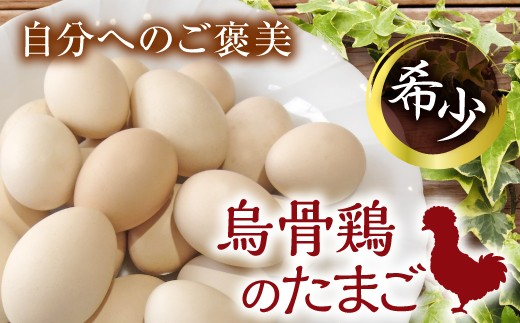 会津の大自然で育った「烏骨鶏」のたまご(12個)