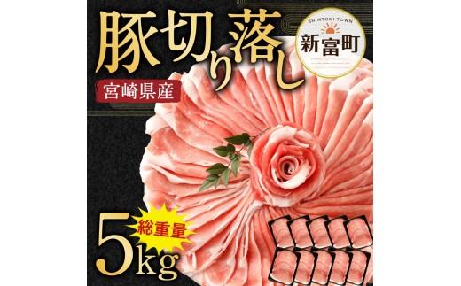 小分けで便利!10パックでお届け<宮崎県産豚肉5㎏切落し>【C240】