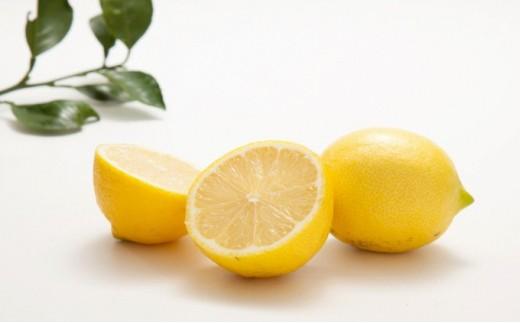 [№5772-0282]無農薬(栽培期間中)レモン2.5kg