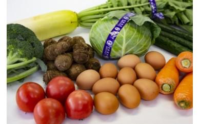 【6か月定期便】東京・八王子産 産直朝どれ新鮮野菜&卵の詰め合わせ