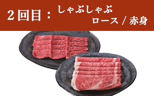 2回目 しゃぶしゃぶ(ロース/赤身)