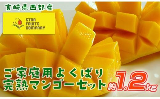 【数量限定】スターフルーツカンパニー「ご家庭用」宮崎県西都産 よくばり完熟マンゴーセット約1.2kg<1.5−107>