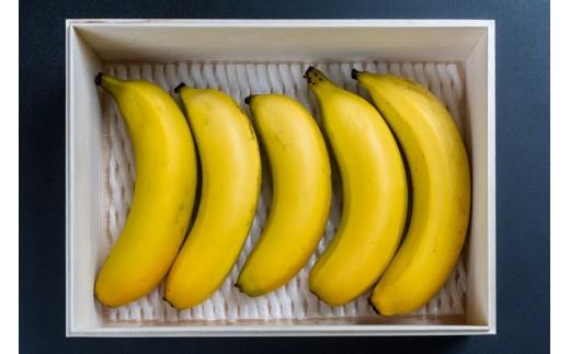 BL‐1 奄美バナナ紙箱入り5本セット
