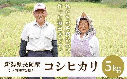 F8-01法末棚田米・コシヒカリ5kg
