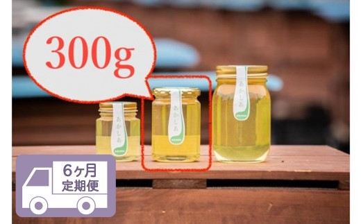 【6回定期便】日本一に輝いた巣鴨養蜂園あかしあハチミツ300g