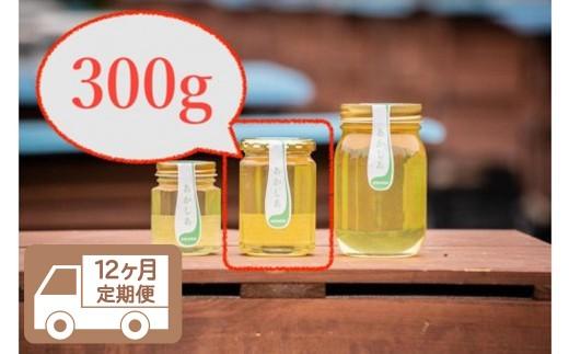 【12回定期便】日本一に輝いた巣鴨養蜂園あかしあハチミツ300g