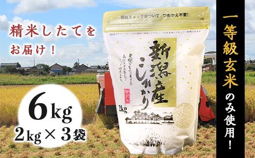 31-01新潟県産コシヒカリ6kg(2kg×3袋)