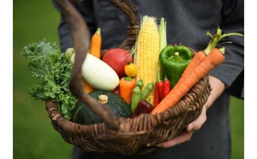 自社ファームから届く安心安全、新鮮な食材
