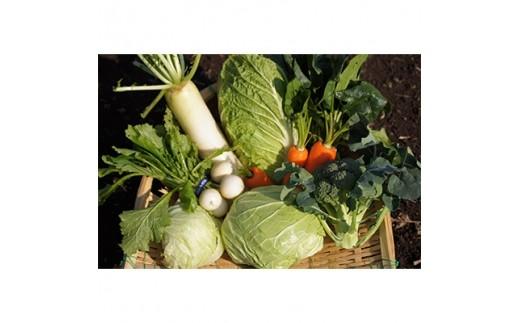 伊豆メディカル農園の健康野菜セット【1047533】