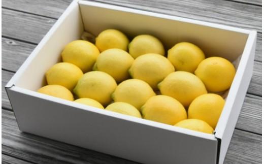 人気ローズガーデンの減農薬レモン2.5kg B-271